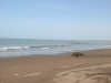 dona-ana-beach