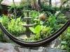 courtyard-at-garden-cafe