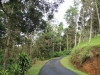 driveway-at-las-cabinas