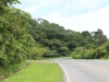driveway-from-pan-american-highway