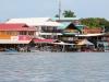 bocas-marine-tours-in-bocas-town