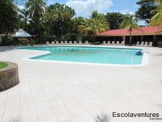 pool-at-best-western-mercedes
