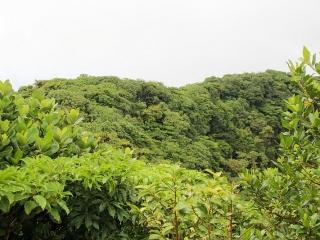 mombacho-volcano-growth