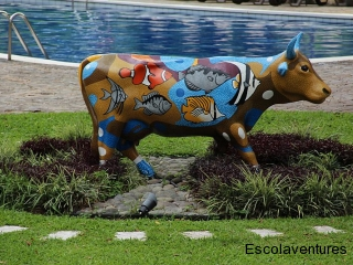 painted-cow-at-best-western-irazu